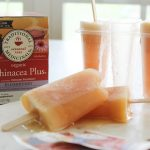 Immune Boosting and Throat Soothing Pineapple Echinacea Popsicles
