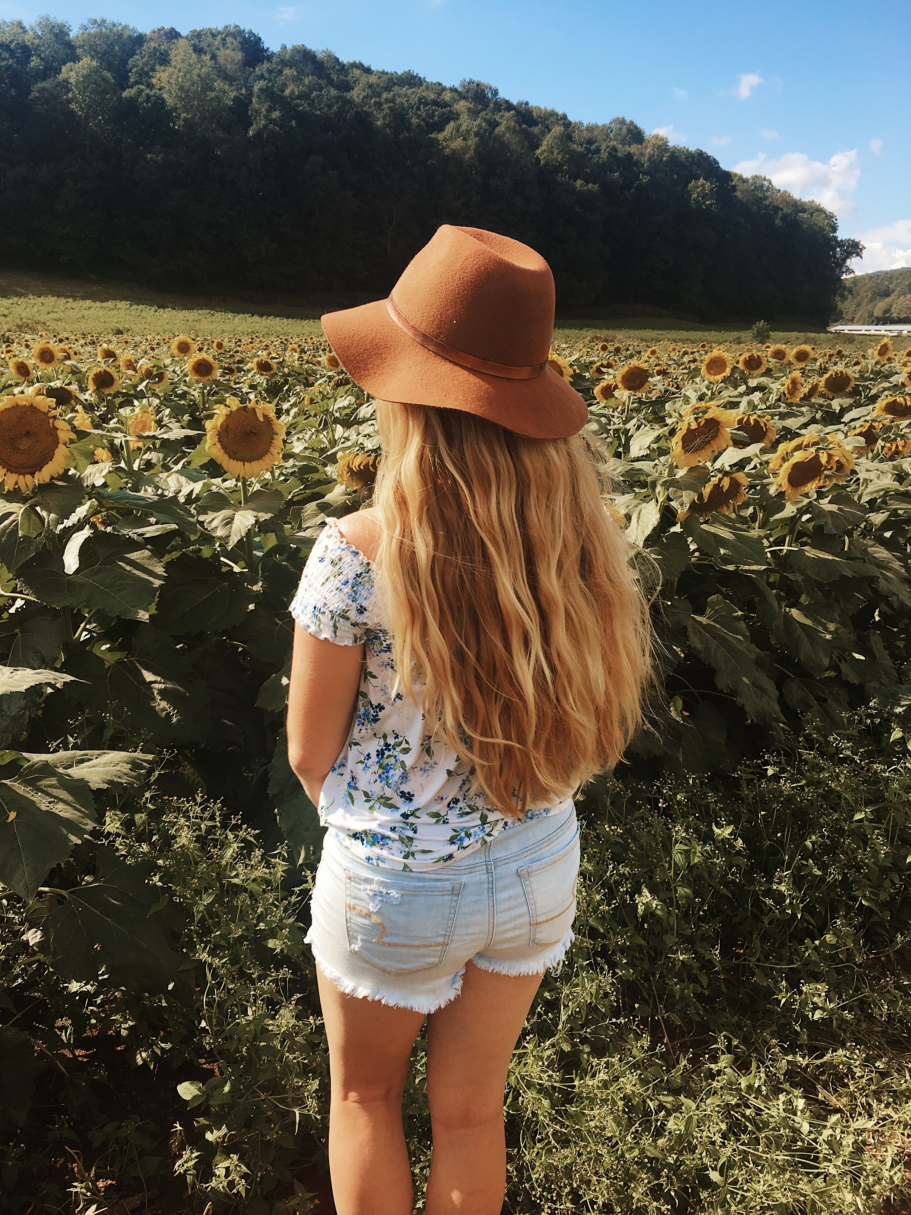 girl with long blonde wavy hair standing in a field of sunflowers